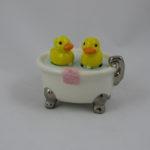 Duckies & bathtub